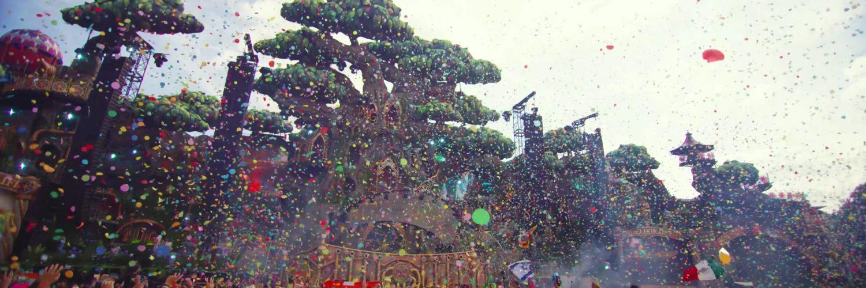Festival Goals - Tomorrowland