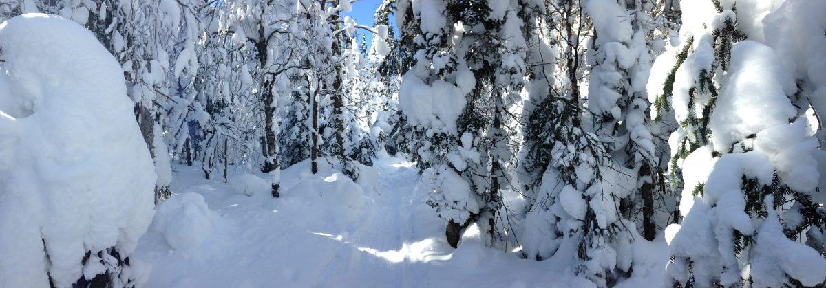 Winter Wonderland in den Bergen Québecs